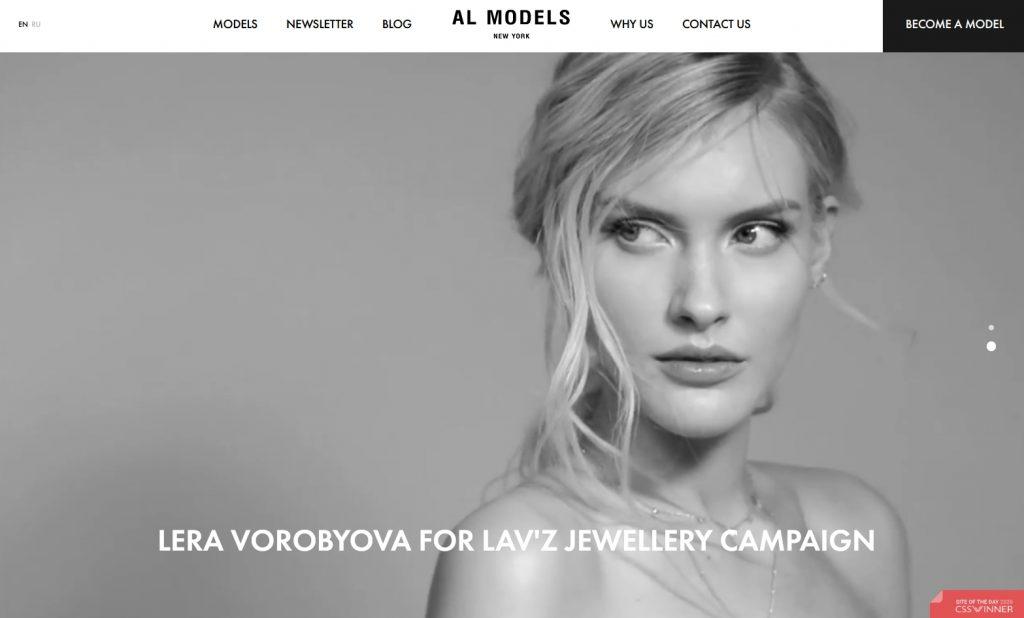 The homepage of Al Models
